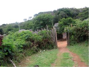 Luatame, Mount Songozwi