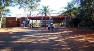 Venda University